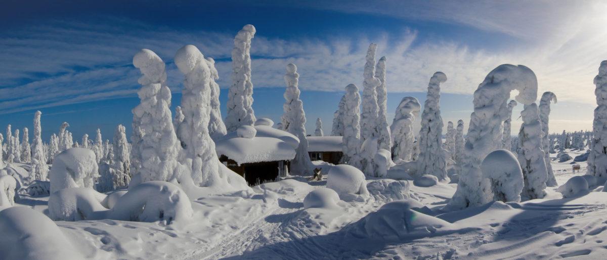 Snowy winter landscape panorama - Riisitunturi